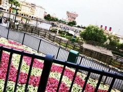 林宏美 公式ブログ/東京Disneysea 画像1