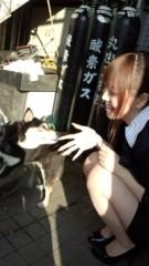 渋沢一葉 公式ブログ/今日のワンコ。 画像3