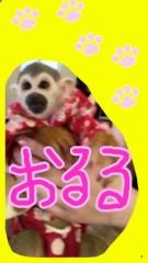 渋沢一葉 公式ブログ/猿の進化。 画像1