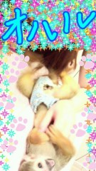 渋沢一葉 公式ブログ/お猿の画像。 画像1