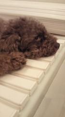 岡西敦恵 公式ブログ/おはよう 画像1