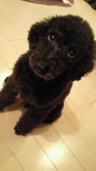 岡西敦恵 公式ブログ/久しぶりに♪ 画像1