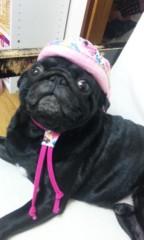福井博章 公式ブログ/娘の帽子 画像1