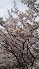 モモ 公式ブログ/井の頭公園 画像1