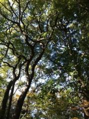 河野 春菜 公式ブログ/森林浴。 画像1