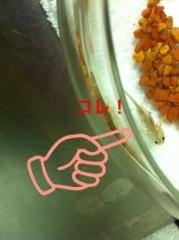 河野 春菜 公式ブログ/Mr.ウーパー。 画像1