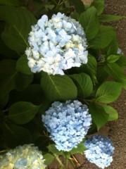 河野 春菜 公式ブログ/hi。 画像1