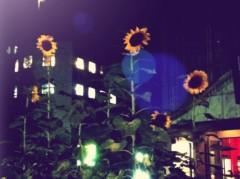 河野 春菜 公式ブログ/look at。 画像1