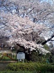 川久保秀一 公式ブログ/散歩 画像1