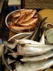 川久保秀一 公式ブログ/タイムリーオフィス釣り部 画像3