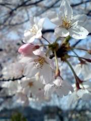 川久保秀一 公式ブログ/散歩 画像2