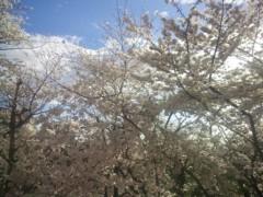 高槻純 プライベート画像 2014-03-30 17:18:36