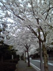 櫻井杏美 公式ブログ/\とげP/ 画像1
