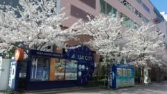 OZグレートライブ、ズキトモ揃って。 公式ブログ/桜がキレイ! 画像3