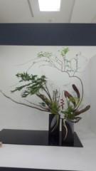 OZ 公式ブログ/素晴らしい生け花 画像1