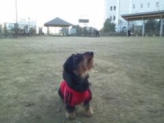 大沢樹生 公式ブログ/WAN!! 画像2