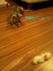 卜部和泉 公式ブログ/君ゎ自由だ◎ 画像1