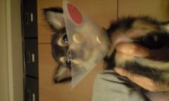 新田恵利 公式ブログ/クレオパトラ? 画像1