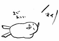 negio & negiko-ネギオ & ネギコ- 公式ブログ/まじ 画像1