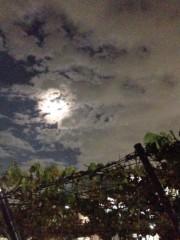 井内志保 公式ブログ/夜道 画像1