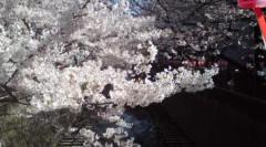 井上清三 公式ブログ/私の波乱万丈の人生について 画像1