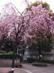 亀岡久世 公式ブログ/お気に入り 画像1