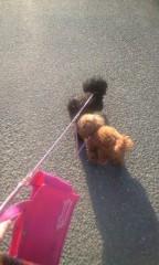 小野まりえ 公式ブログ/散歩されてます。。。 画像1