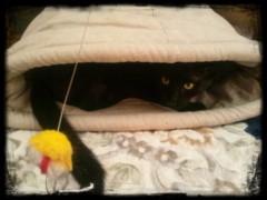 小野まりえ 公式ブログ/smile cat 。 画像1