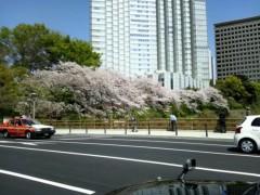 小野まりえ 公式ブログ/赤坂煮付け。。。 画像1