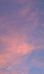 小野まりえ 公式ブログ/ピンク色の空。。。 画像1