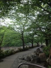 葵うらら 公式ブログ/新緑の宴?♪(*^^)o∀*∀o(^^*)♪ 画像1