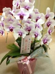 葵うらら 公式ブログ/素敵なお花を☆*:.。. o(≧▽≦)o .。.:*☆ 画像2