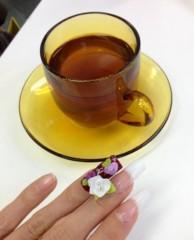葵うらら 公式ブログ/お花が咲きました(≧∇≦) 画像1