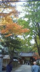 葵うらら 公式ブログ/紅葉の季節☆★☆ 画像1