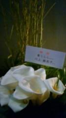 葵うらら 公式ブログ/ありがとうございます♪ 画像1