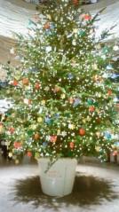 葵うらら 公式ブログ/Merry☆Christmas ★ 画像1