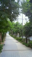 葵うらら 公式ブログ/お散歩〜〜〜( ●´∀`●)/ 画像1