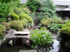 チェウニ 公式ブログ/美しい~ 画像1
