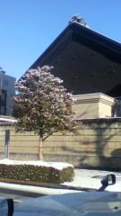 チェウニ 公式ブログ/2011-01-16 09:04:33 画像1