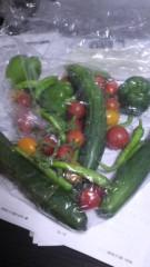 甲斐 真里 公式ブログ/夏野菜もらっちゃった♪ 画像1