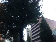 甲斐 真里 公式ブログ/東京の景色。 画像2