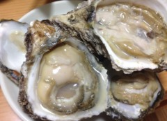 甲斐 真里 公式ブログ/岩牡蠣と白ハマグリ 画像1