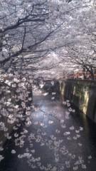 甲斐 真里 公式ブログ/目黒川桜まつり 画像1