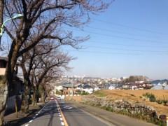"甲斐 真里 公式ブログ/今年の桜""定点観測編"" 画像1"