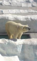 甲斐 真里 公式ブログ/上野『上野動物園』 画像3