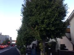 甲斐 真里 公式ブログ/東京の景色。 画像3