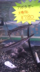 甲斐 真里 公式ブログ/中崎町『佐野熱帯魚』 画像3