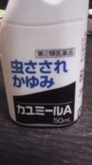 甲斐 真里 公式ブログ/答え合わせ→カユミールA 画像1