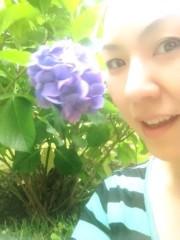 AYUMO 公式ブログ/紫陽花 画像1