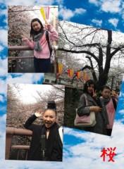 AYUMO 公式ブログ/桜 画像1
